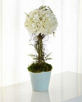 John-Richard Collection Giardino Topiary