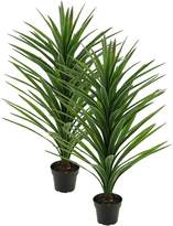 Rogue Artificial Brazilian Yucca (Set of 2), 107cm