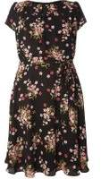 Dorothy Perkins Womens **Billie & Blossom Curve Black Floral Chiffon Dress