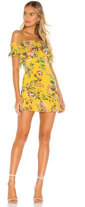 Tularosa Lanzo Dress