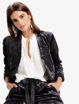Lucky Brand Fashion Blazer Printed Velvet