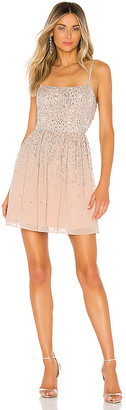 NBD X By X by Katy Mini Dress