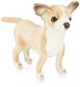 Hansa Chihuahua