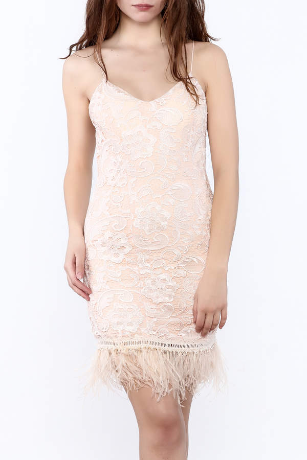 Minuet Lace Featherd Trim Dress