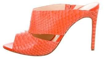 Alexandre Birman Python Slide Sandals