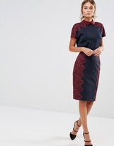 Ted Baker Queeny Pencil Skirt with Scalloped Lace