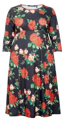 Dorothy Perkins Womens **Dp Curve Red Floral Print Midi Skater Dress, Red