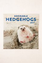 Urban Outfitters 2017 Adorable Hedgehogs Wall Calendar