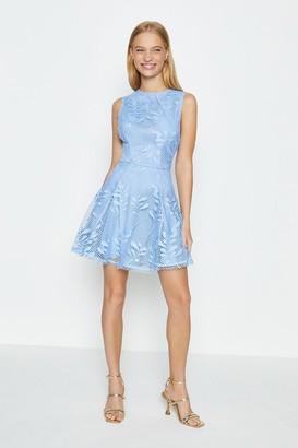 Coast Lace Skater Skirt Dress
