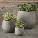 Williams-Sonoma Williams Sonoma Round Concrete Planter Set
