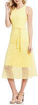 Antonio Melani Enid Sleeveless Striped Mesh Dress