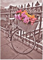 Graham & Brown Flower Basket Bicycle Canvas Wall Art