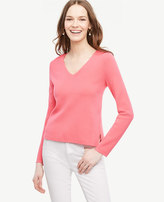 Ann Taylor V-Neck Sweater