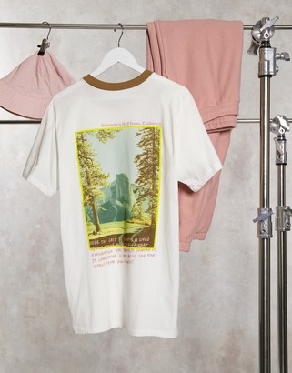 The North Face Rogue graphic t-shirt in white