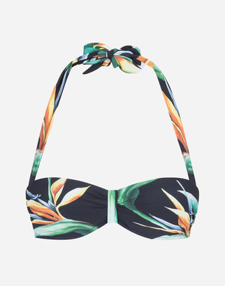 Dolce & Gabbana Padded Bandeau Bikini Top With Bird Of Paradise Print