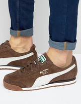 Puma Roma Trainers In Brown 36354407