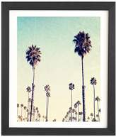 Deny Designs California Palm Trees by Bree Madden (Framed)