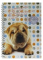 Swanson Christian Supply Love One Another Journal