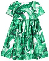 Dolce & Gabbana Leaves Printed Cotton Poplin Dress