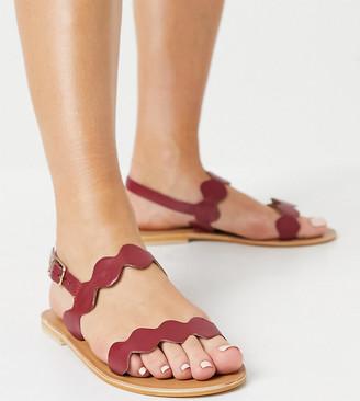 ASOS DESIGN Wide Fit Feedback leather flat sandals in burgundy