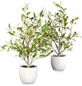 Nearly Natural 18-Inch Olive Silk Tree with Vase (Set of 2)