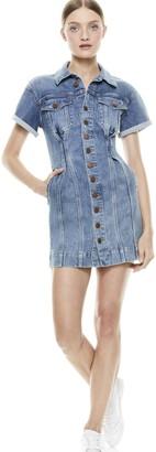 Alice + Olivia Denim Corset Dress