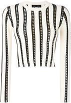 Proenza Schouler Striped Cropped Knit Crewneck