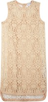 DKNY Powder Blush Flocked Lace Dress