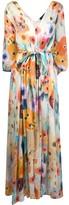 Antonelli floral printed maxi dress