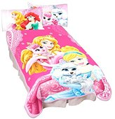 Disney Princesses Palace Pets Wonderful Love Microraschel Blanket, 62 by 90-Inch