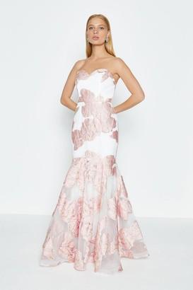 Coast Bandeau Floral Jacquard Maxi Dress