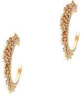 Elizabeth Cole Crystal Fringe Hoop Earrings