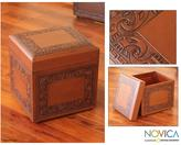 Novica Mohena Wood and Leather 'Flight of the Condor' Ottoman (Peru)