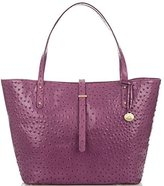 Brahmin All Day Tote Fig Normandy
