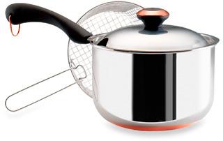 Paula Deen Stainless Steel 4-Quart Deep Fryer