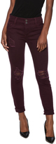 Cello Jeans Wine Distressed Jeans