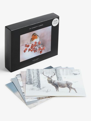 John Lewis & Partners Wildlife Bumper Charity Christmas Cards, Box of 25