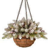 NATIONAL TREE CO National Tree Co. Dunhill Hanging Basket
