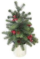 Threshold Lit Pine with Berry Tree in Silver Pot (19