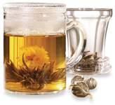 Primula Tea® 12-Ounce Tea Maker