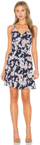 Greylin Serina Print Blocked Dress