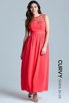Little Mistress Curvy Curvy Coral Mesh Overlay Embroidered Maxi Dress