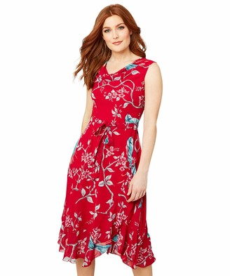 Joe Browns Women's Birds and Flowers Summer Dress Casual
