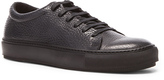 Acne Studios Adrian Grain Calfskin Sneakers