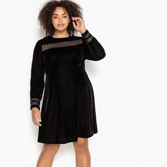 Castaluna Plus Size Straight Velvet Dress with Lace Details