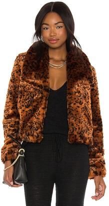 BB Dakota Leopard Queen Jacket
