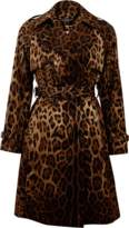Dolce & Gabbana Leopard Trench