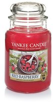 Yankee Candle Company Red Raspberry Large Jar Candle