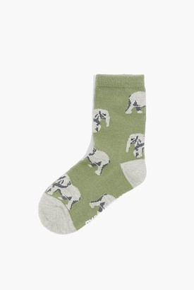 Country Road Elephant Sock