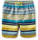 Tea Collection Dawn Patrol Swim Trunks